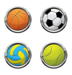 sport ball buttons vector image