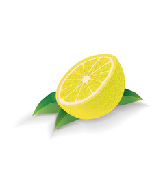 lemon with leaves isolated on white vector image
