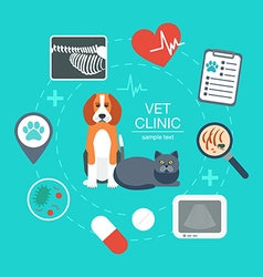 Banner background poster concept with veterinary vector