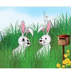 Cartoon Rabbits vector
