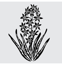 Decorative hyacinth vector