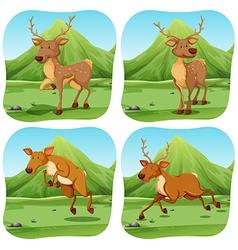 Deers in four different scenes vector