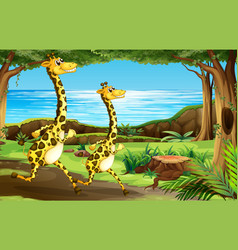 giraffe running in forest vector image