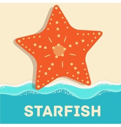 retro flat starfish icon concept design vector image