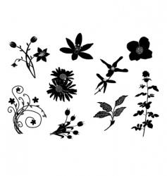 set of floral design elements vector image