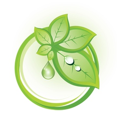 Ecological badge with leaves in circles vector image