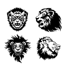 Growling lion tattoo vector image