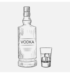 Hand drawn set of vodka elements vector image