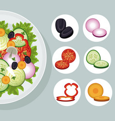 salad vegetables products natural food vector image