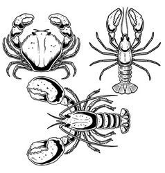 set crab lobster omar in engraving style vector image