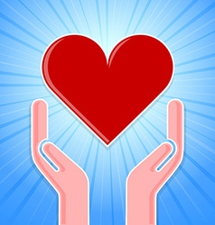 Caring hands with heart vector image vector image