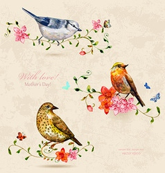collection of cute birds watercolor painting vector image vector image