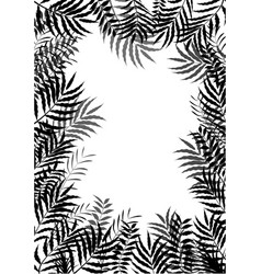 palm leaves of frame background of silhouette vector image