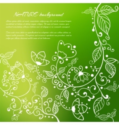 Colorful floral background with leaves and flowers vector image