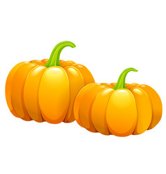 two beautiful pumpkins without leaves vector image vector image