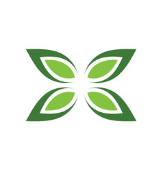 green leaf butterfly logo vector image
