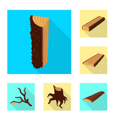 isolated object of material and nature icon set vector image