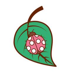 ladybug on leaf spring time vector image