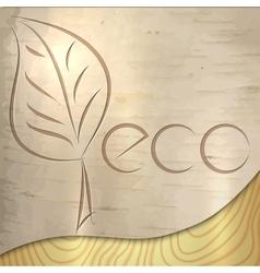 light wood birch ecology texture vector image