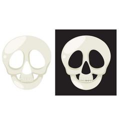 set of human skull vector image