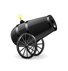 cannon isolated on white vector image vector image
