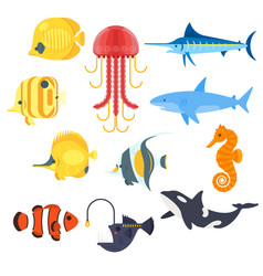 flat style set of exotic fish icon for web vector image