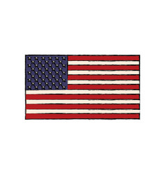 united states of american flag insignia national vector image