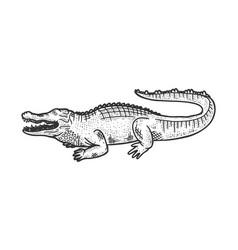 Crocodile animal sketch vector