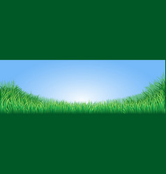 green grass field vector image vector image