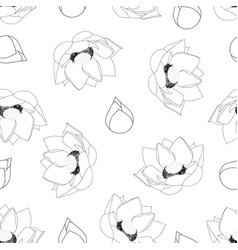 indian lotus outline on white background vector image