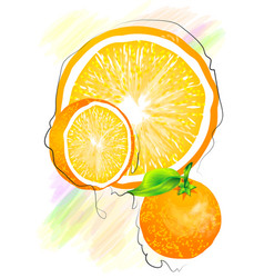 Orange on multicolor vector