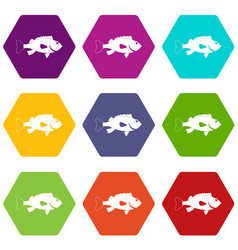 Sea bass fish icon set color hexahedron vector