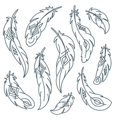 set of bird feathers with ethnic pattern vector image