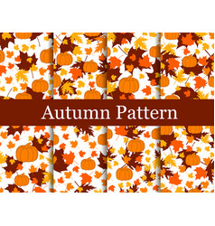 set of seamless patterns of autumn themes vector image