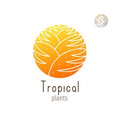 Tropical jungle vector