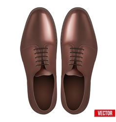 Male fashion classic brown shoes vector image