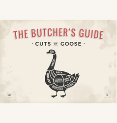 cut of meat set poster butcher diagram scheme - vector image vector image