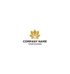 cannabies oil logo design vector image