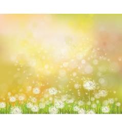 floral spring sunshine background vector image vector image