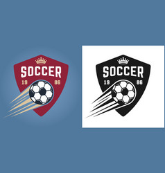 soccer two styles emblems with flying ball vector image