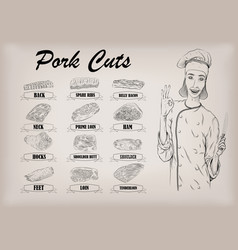 pork pig carcass cut parts info graphics scheme vector image vector image