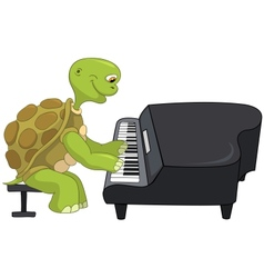 Funny Turtle Pianist vector image