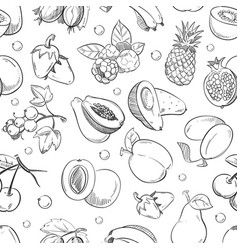 healthy fruit hand drawn seamless texture vector image