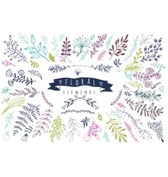 Big collection different hand drawn floral vector