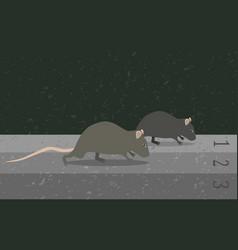 concept rat race metaphor vector image