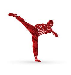 kung fu karate kick vector image
