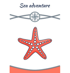 sea adventure starfish poster vector image