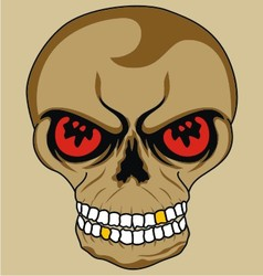 isolate skull vector image vector image