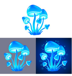 magic mushrooms isolated vector image vector image