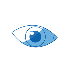 cartoon eye human vision look watch icon vector image